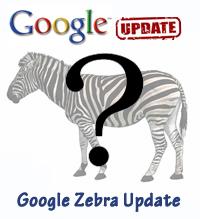 Google Zebra Update